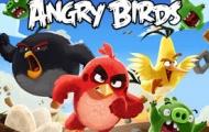 Angry Birds Suchen Frau