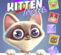 Kitten Match spielen